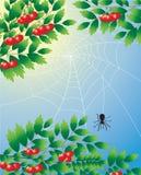 Albero con il ragno Immagini Stock
