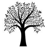 Albero con il vettore delle foglie Fotografia Stock