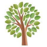 Albero con il vettore delle foglie illustrazione di stock