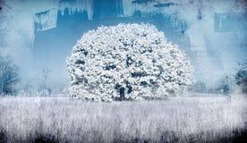 Albero congelato Immagine Stock