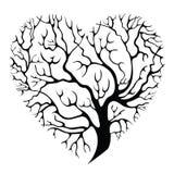 Albero-cuore Fotografia Stock