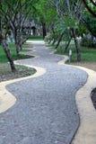 Albero curvo di verde di modo della passeggiata della località di soggiorno Immagini Stock