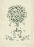 Albero d'annata disegnato a mano con le foglie cadenti Fotografia Stock