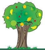 Albero da frutto illustrazione vettoriale
