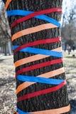 Albero decorato con i nastri colorati Immagine Stock Libera da Diritti