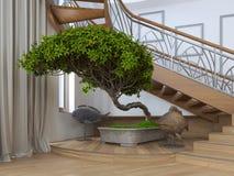 Albero dei bonsai all'interno di una casa privata con la s decorativa Immagine Stock Libera da Diritti