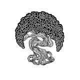 Albero dei bonsai dei grafici tronco della curva, grande corona Fotografia Stock