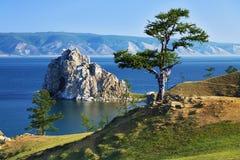 Albero dei desideri sul lago Baikal Fotografia Stock Libera da Diritti