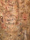 Albero dei graffiti fotografia stock libera da diritti