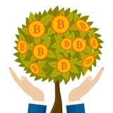 Albero dei soldi con i bitcoins che crescono sulla mano umana Immagine Stock