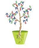 albero dei soldi isolato Fotografia Stock