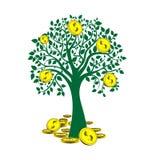 Albero dei soldi isolato su priorità bassa bianca. Immagine Stock Libera da Diritti