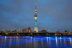 Albero del cielo di Tokyo Fotografia Stock