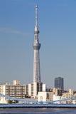 Albero del cielo di Tokyo Immagini Stock