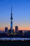 Albero del cielo di Tokyo al crepuscolo Immagini Stock