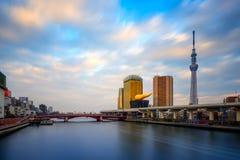 Albero del cielo di Tokyo al tramonto Fotografie Stock Libere da Diritti