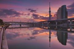 Albero del cielo di Tokyo e fiume di Sumida, Tokyo, Giappone ad alba immagini stock