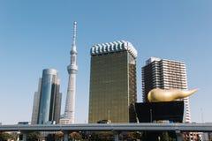 Albero del cielo di Tokyo e orizzonte di Tokyo Immagini Stock Libere da Diritti