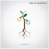 Albero del concetto di conoscenza Segno di affari e di istruzione Immagine Stock