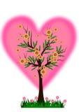 Albero del cuore Fotografia Stock