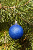 Albero del decorazione-pino di natale Fotografie Stock Libere da Diritti