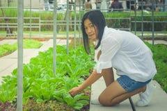 Albero del germoglio della tenuta della mano della donna di vista laterale per preparare pianta un albero su terra al giardino al Immagine Stock Libera da Diritti