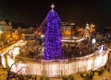 Albero del nuovo anno su Sophia Square a Kiev Fotografia Stock Libera da Diritti