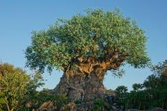 Albero del regno animale vita di Disney Fotografia Stock Libera da Diritti