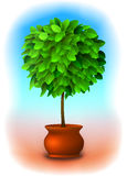Albero del Topiary. Vettore illustrazione di stock