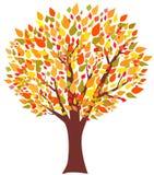 Albero dell'autunno Fotografia Stock Libera da Diritti