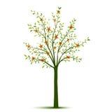 Albero della primavera con le foglie ed i fiori Fotografia Stock
