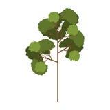 Albero della siluetta con il modello frondoso tre dei rami Immagini Stock Libere da Diritti
