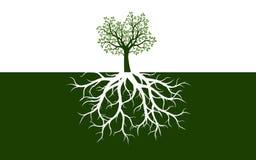 Albero della sorgente con i fogli Illustrazione di vettore royalty illustrazione gratis