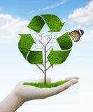 Albero come simbolo di riciclaggio Fotografia Stock Libera da Diritti