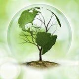 Albero della terra Immagine Stock Libera da Diritti