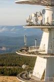 Albero della trasmissione dettagliatamente con area boscosa nei precedenti fotografia stock