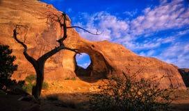 Albero della valle del monumento e roccia della finestra Fotografia Stock Libera da Diritti