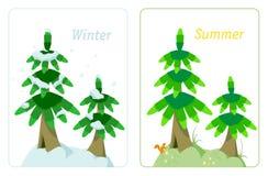 Albero di abete di estate e di inverno Fotografia Stock