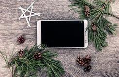 Albero di abete di Natale con i coni Immagine Stock