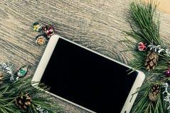 Albero di abete di Natale con i coni Immagini Stock
