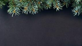Albero di abete di natale con la decorazione Fotografia Stock