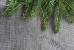 Albero di abete di Natale su fondo di legno Fotografia Stock Libera da Diritti