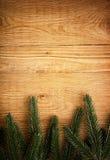 Albero di abete su legno Fotografie Stock Libere da Diritti
