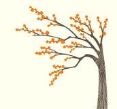 Albero di autunno