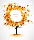 Albero di autunno con le belle foglie di volo illustrazione di stock