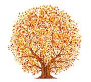Albero di autunno con le foglie gialle, arancio e rosse isolate sul vettore bianco del fondo royalty illustrazione gratis