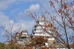 Albero di autunno del castello del Giappone Himeji Immagine Stock