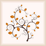 Albero di autunno di eleganza. Fotografia Stock