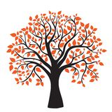 Albero di autunno per il vostro disegno Fotografia Stock Libera da Diritti