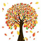 Albero di autunno per il vostro disegno Fotografie Stock Libere da Diritti